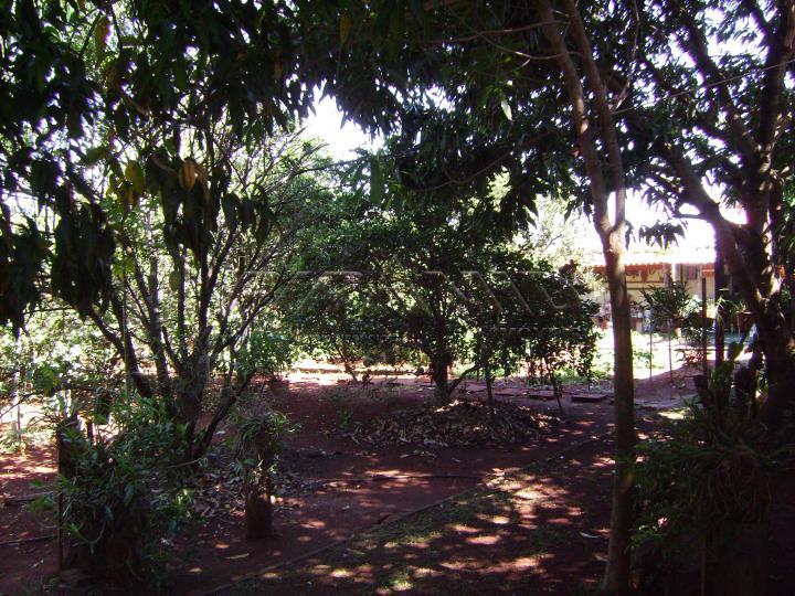 Comprar Casa / Condomínio em Jardinópolis R$ 1.170.000,00 - Foto 27