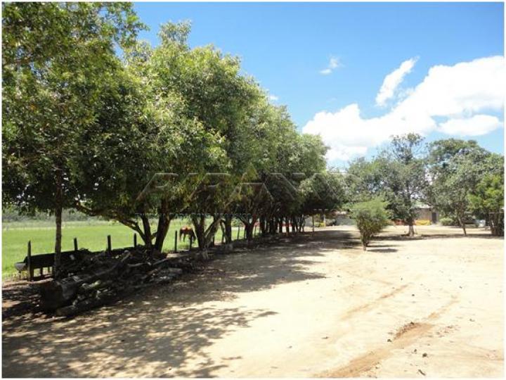 Comprar Rural / Sítio em Serra Azul apenas R$ 3.100.000,00 - Foto 14