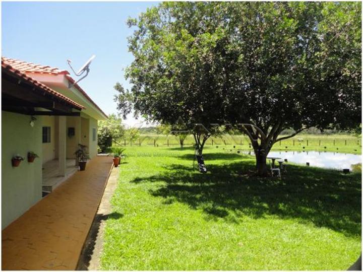 Comprar Rural / Sítio em Serra Azul apenas R$ 3.100.000,00 - Foto 17