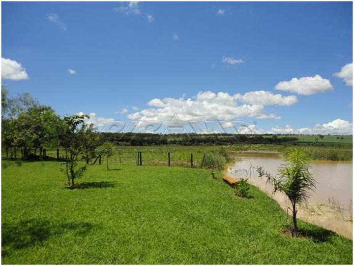 Comprar Rural / Sítio em Serra Azul apenas R$ 3.100.000,00 - Foto 9