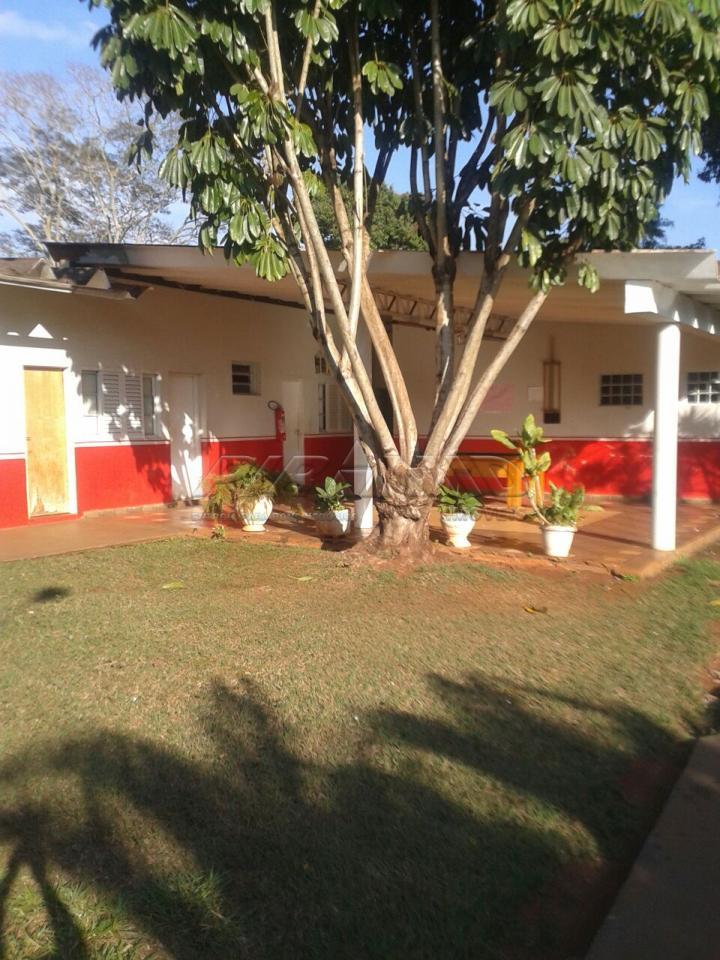 Alugar Rural / Chácara em Ribeirão Preto apenas R$ 6.000,00 - Foto 4