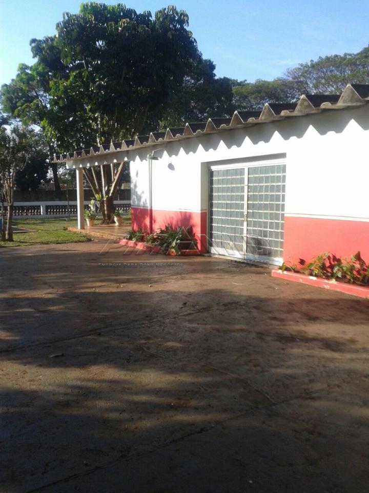 Alugar Rural / Chácara em Ribeirão Preto apenas R$ 6.000,00 - Foto 9