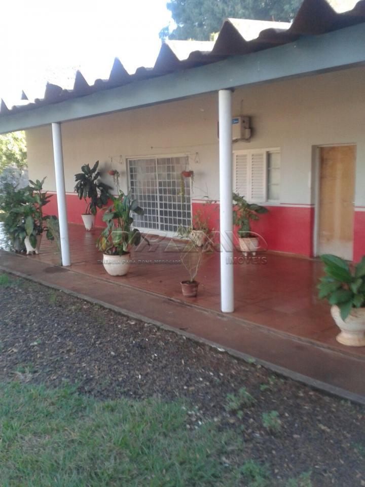 Alugar Rural / Chácara em Ribeirão Preto apenas R$ 6.000,00 - Foto 5