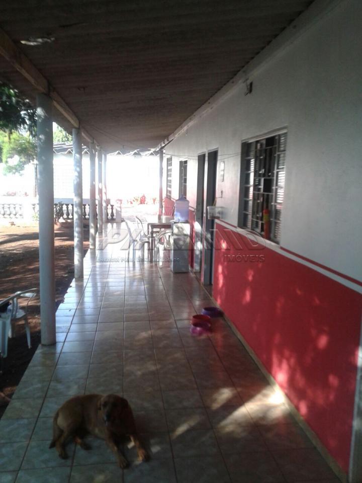 Alugar Rural / Chácara em Ribeirão Preto apenas R$ 6.000,00 - Foto 2
