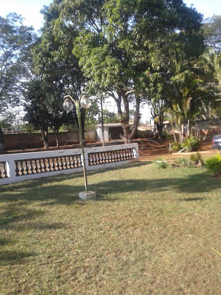 Alugar Rural / Chácara em Ribeirão Preto apenas R$ 6.000,00 - Foto 3