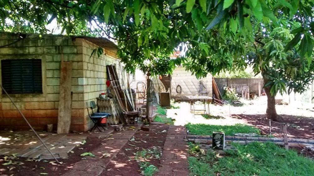 Comprar Rural / Chácara em Ribeirão Preto apenas R$ 3.500.000,00 - Foto 15