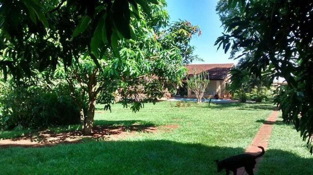 Comprar Rural / Chácara em Ribeirão Preto apenas R$ 3.500.000,00 - Foto 13
