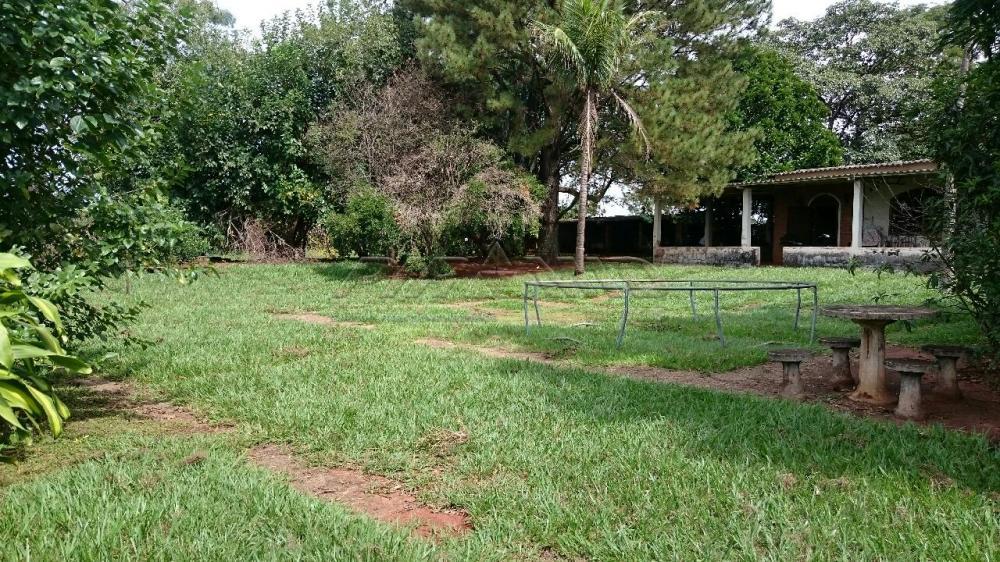 Comprar Rural / Chácara em Ribeirão Preto apenas R$ 3.150.000,00 - Foto 12