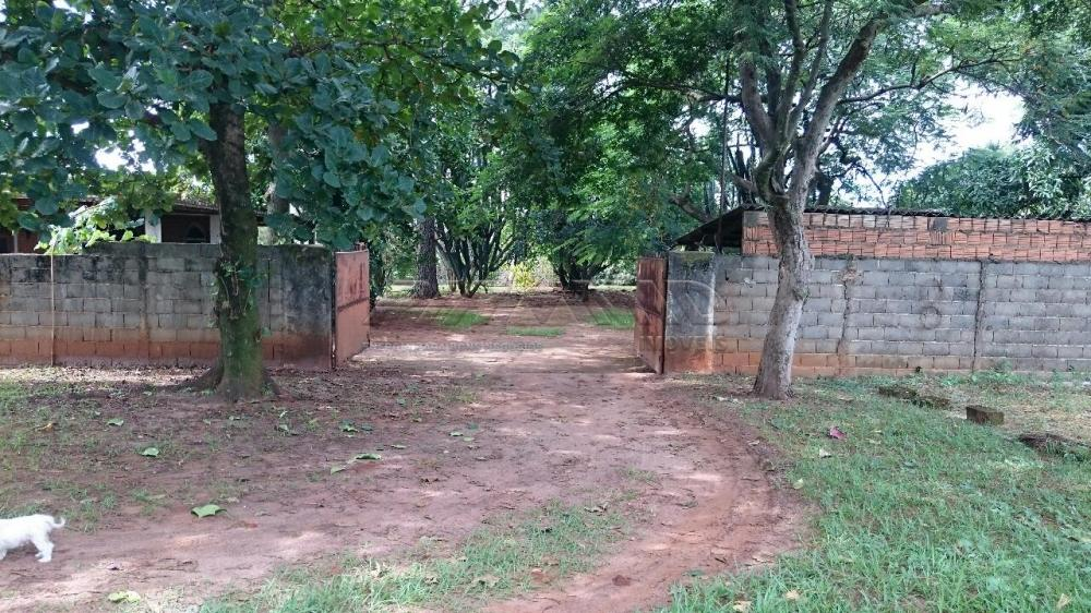 Comprar Rural / Chácara em Ribeirão Preto apenas R$ 3.150.000,00 - Foto 4