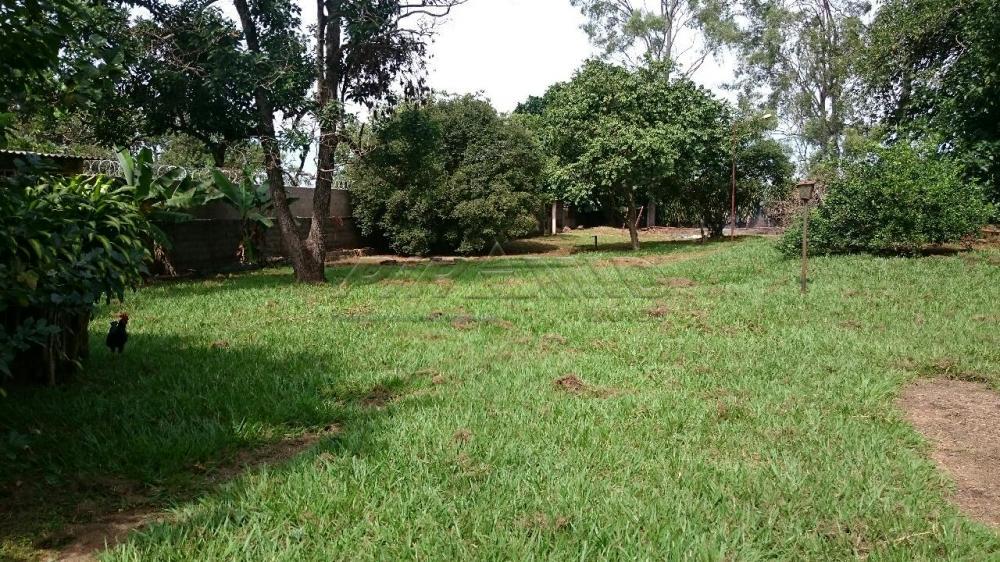 Comprar Rural / Chácara em Ribeirão Preto apenas R$ 3.150.000,00 - Foto 13