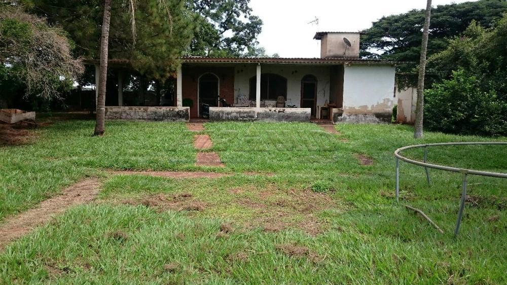 Comprar Rural / Chácara em Ribeirão Preto apenas R$ 3.150.000,00 - Foto 8