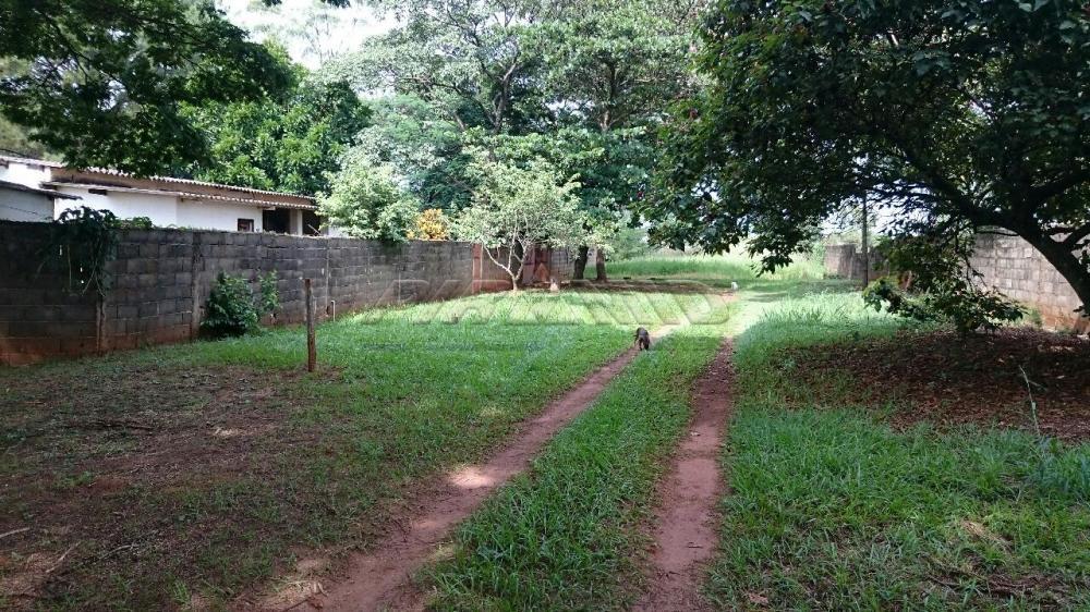 Comprar Rural / Chácara em Ribeirão Preto apenas R$ 3.150.000,00 - Foto 3