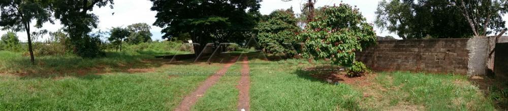 Comprar Rural / Chácara em Ribeirão Preto apenas R$ 3.150.000,00 - Foto 1