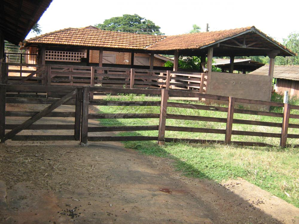 Comprar Rural / Sítio em Jardinópolis apenas R$ 9.900.000,00 - Foto 25