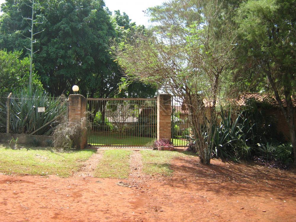 Comprar Rural / Sítio em Jardinópolis apenas R$ 9.900.000,00 - Foto 17