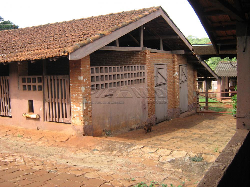 Comprar Rural / Sítio em Jardinópolis apenas R$ 9.900.000,00 - Foto 8