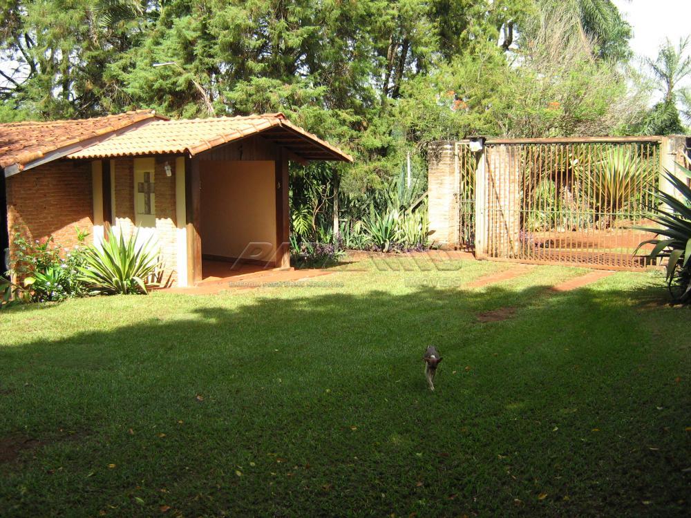 Comprar Rural / Sítio em Jardinópolis apenas R$ 9.900.000,00 - Foto 3