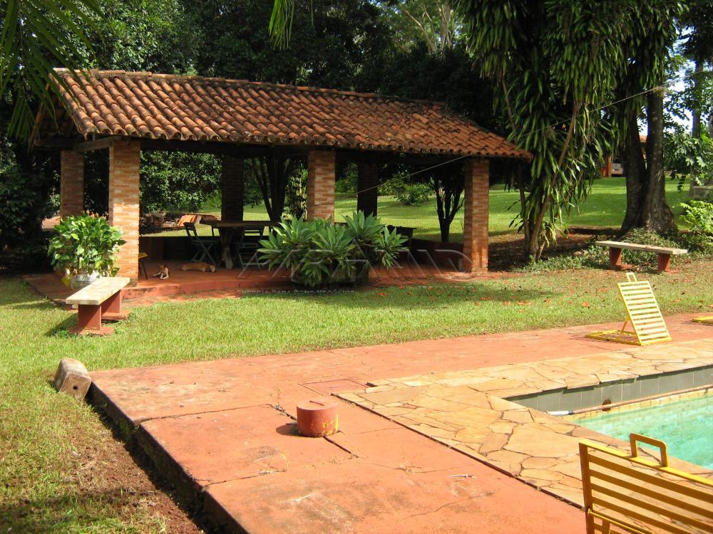 Comprar Rural / Sítio em Jardinópolis apenas R$ 9.900.000,00 - Foto 11