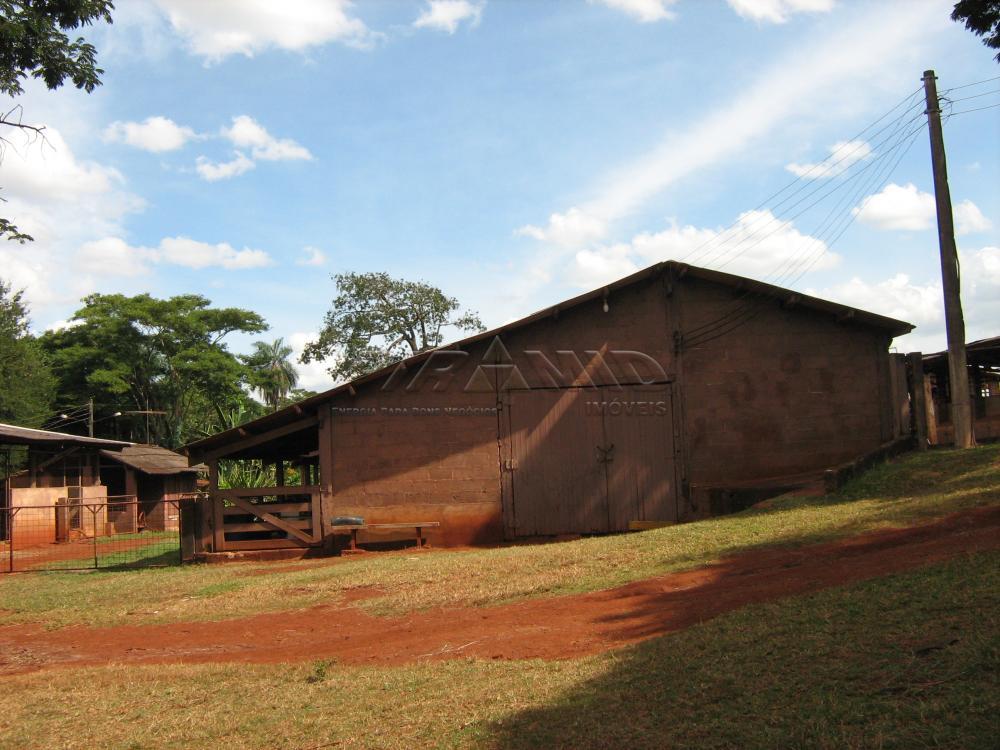 Comprar Rural / Sítio em Jardinópolis apenas R$ 9.900.000,00 - Foto 23