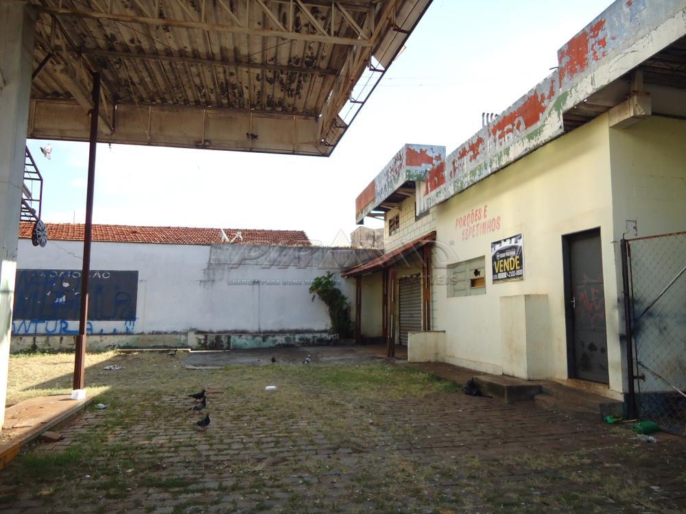 Alugar Comercial / Salão em Ribeirão Preto apenas R$ 5.000,00 - Foto 3
