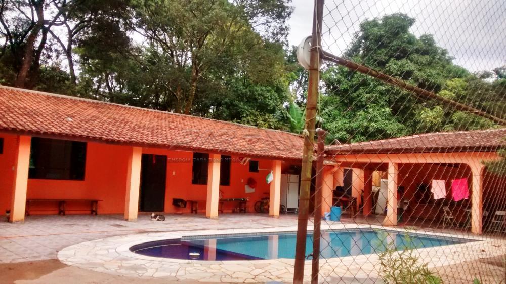 Comprar Rural / Chácara em Ribeirão Preto apenas R$ 800.000,00 - Foto 2