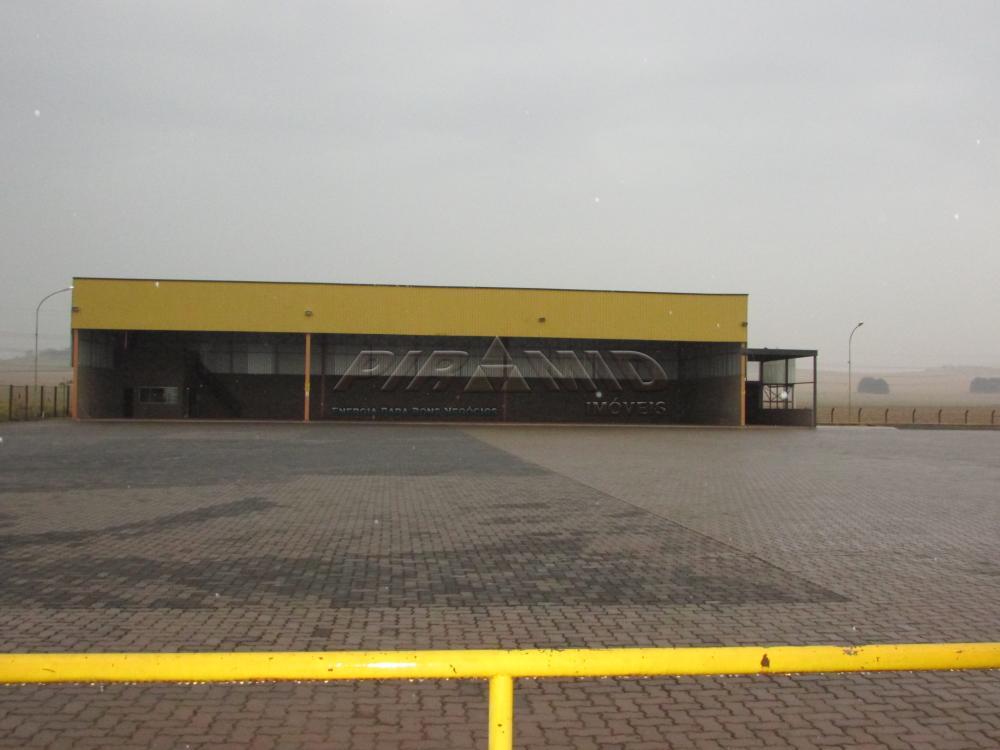 Alugar Comercial / Galpão em Ribeirão Preto apenas R$ 115.000,00 - Foto 12