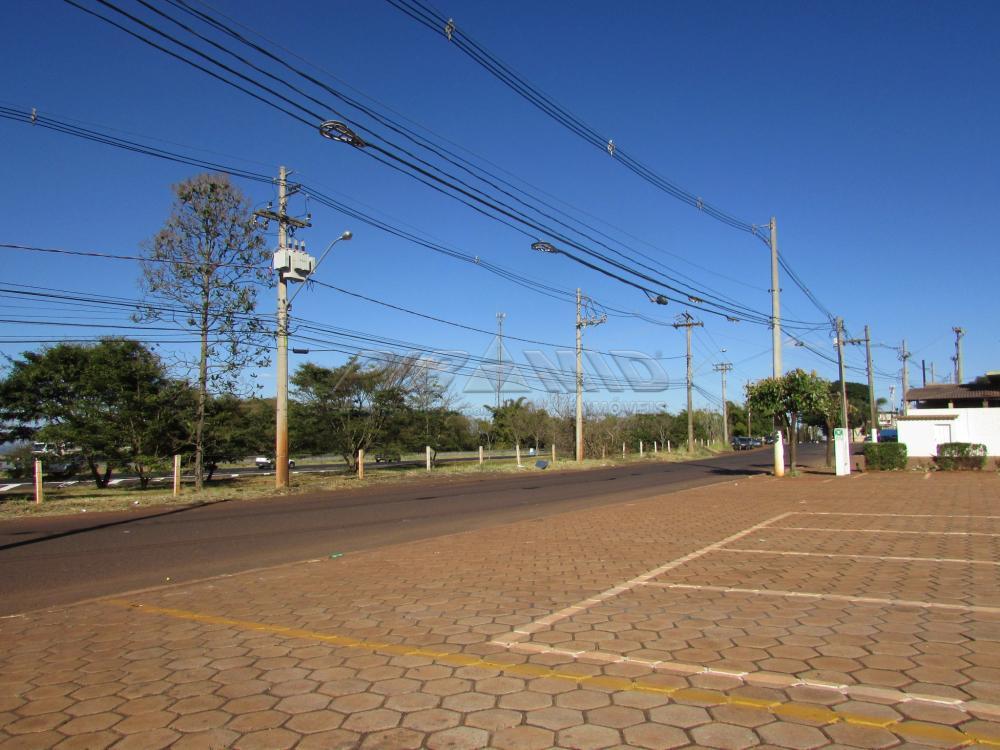 Alugar Comercial / Galpão em Cravinhos apenas R$ 50.000,00 - Foto 3