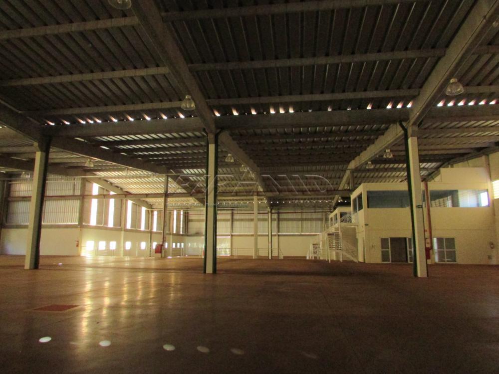 Alugar Comercial / Galpão em Cravinhos apenas R$ 50.000,00 - Foto 23