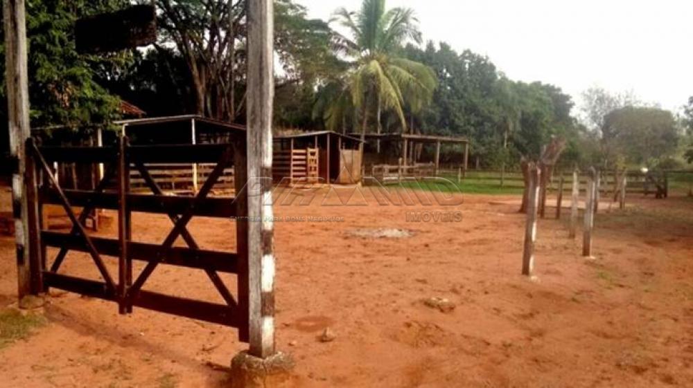 Comprar Rural / Chácara em Ribeirão Preto apenas R$ 850.000,00 - Foto 14