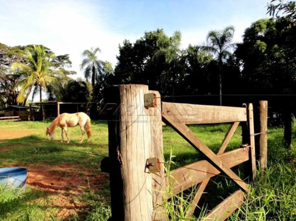 Comprar Rural / Chácara em Ribeirão Preto apenas R$ 850.000,00 - Foto 15