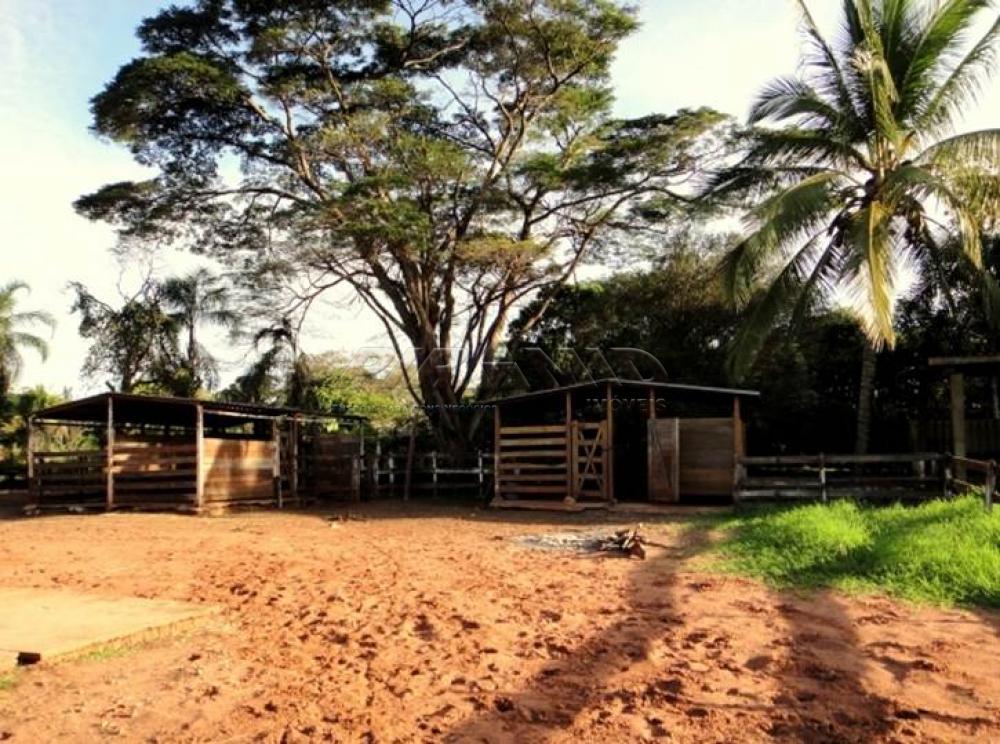 Comprar Rural / Chácara em Ribeirão Preto apenas R$ 850.000,00 - Foto 16