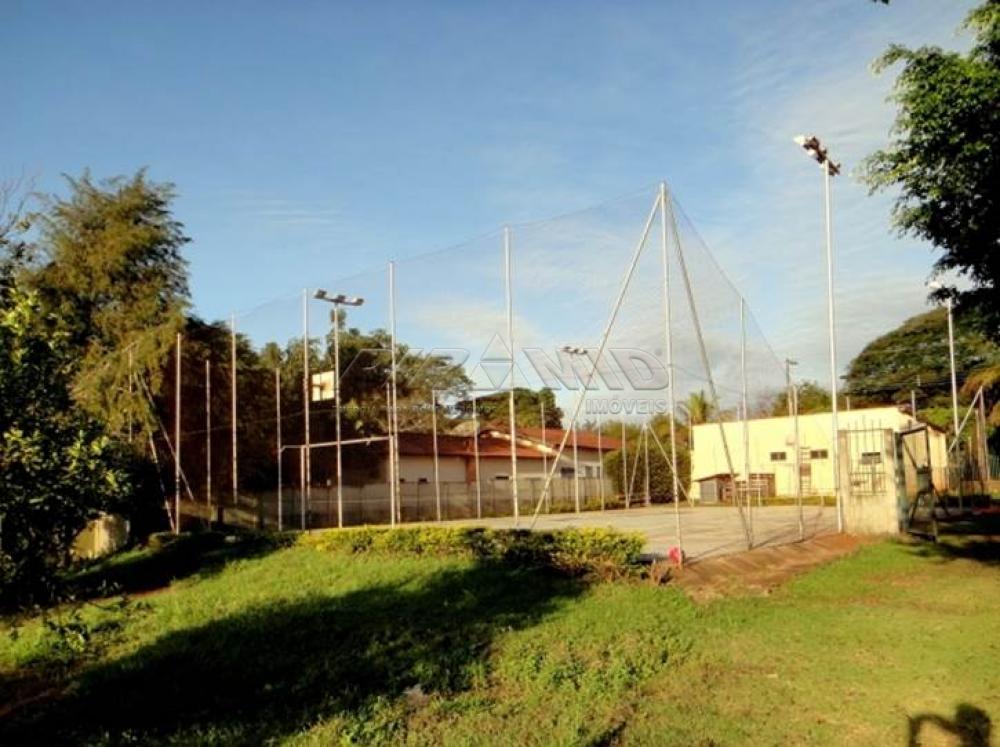 Comprar Rural / Chácara em Ribeirão Preto apenas R$ 850.000,00 - Foto 18