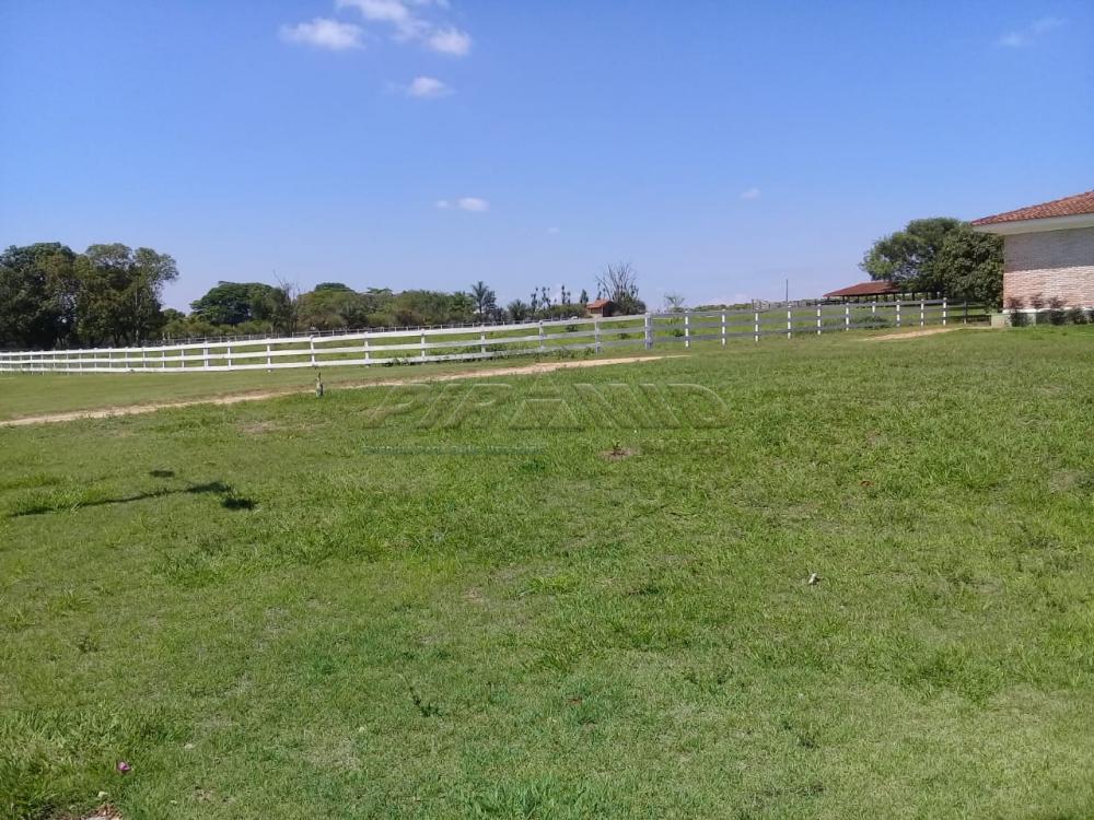 Comprar Rural / Fazenda em Descalvado apenas R$ 3.500.000,00 - Foto 7