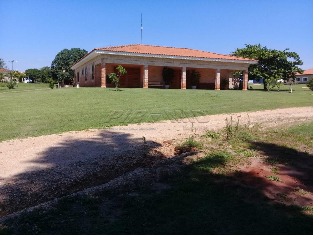 Comprar Rural / Fazenda em Descalvado apenas R$ 3.500.000,00 - Foto 2