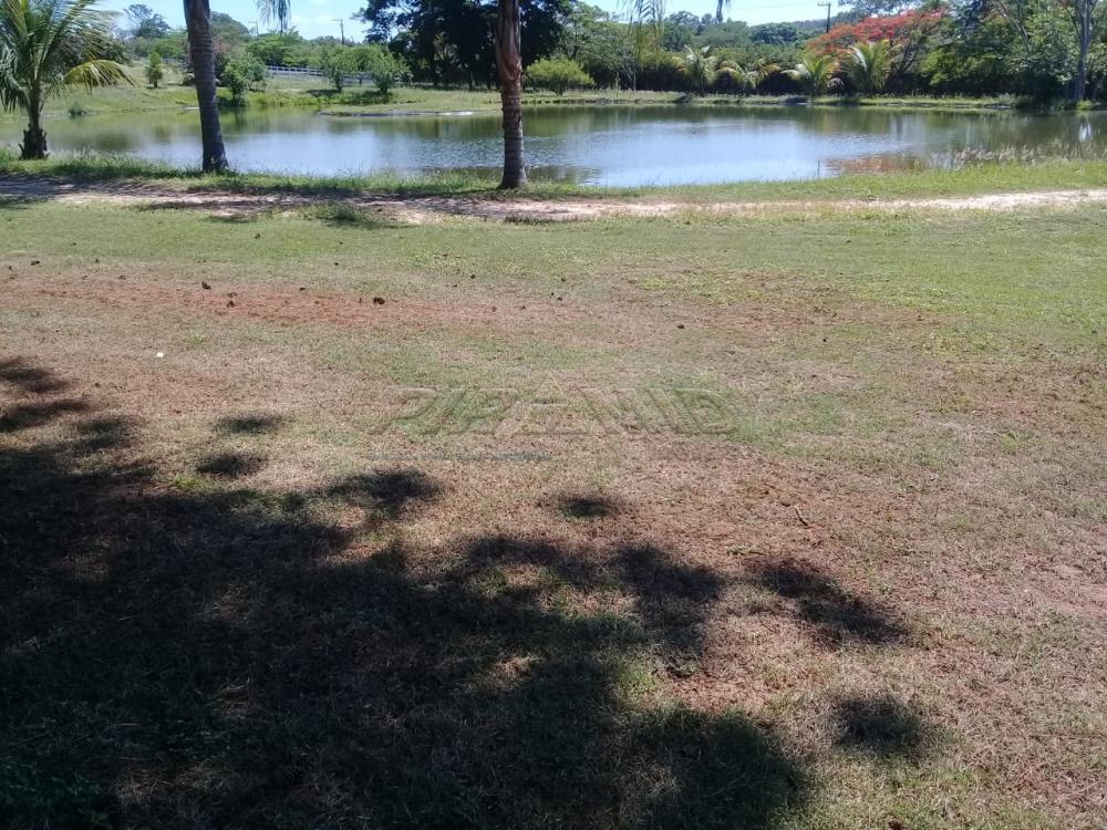 Comprar Rural / Fazenda em Descalvado apenas R$ 3.500.000,00 - Foto 13