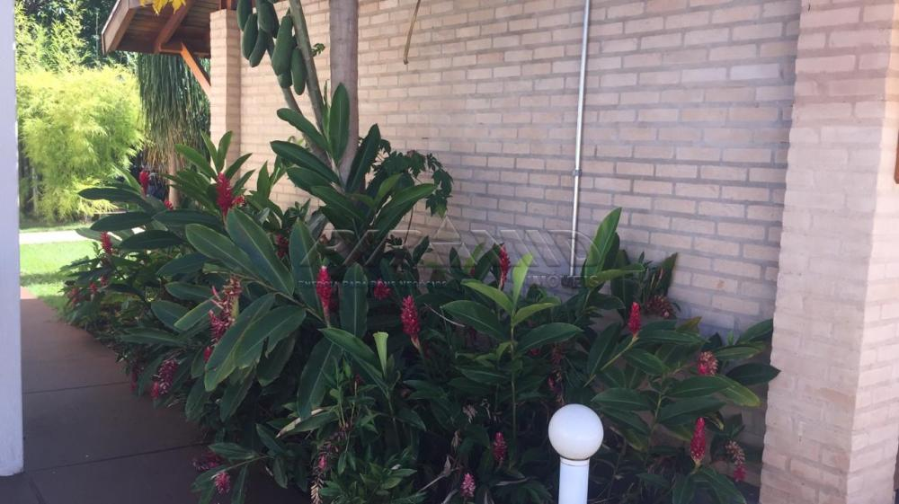Comprar Casa / Condomínio em Jardinópolis apenas R$ 920.000,00 - Foto 6