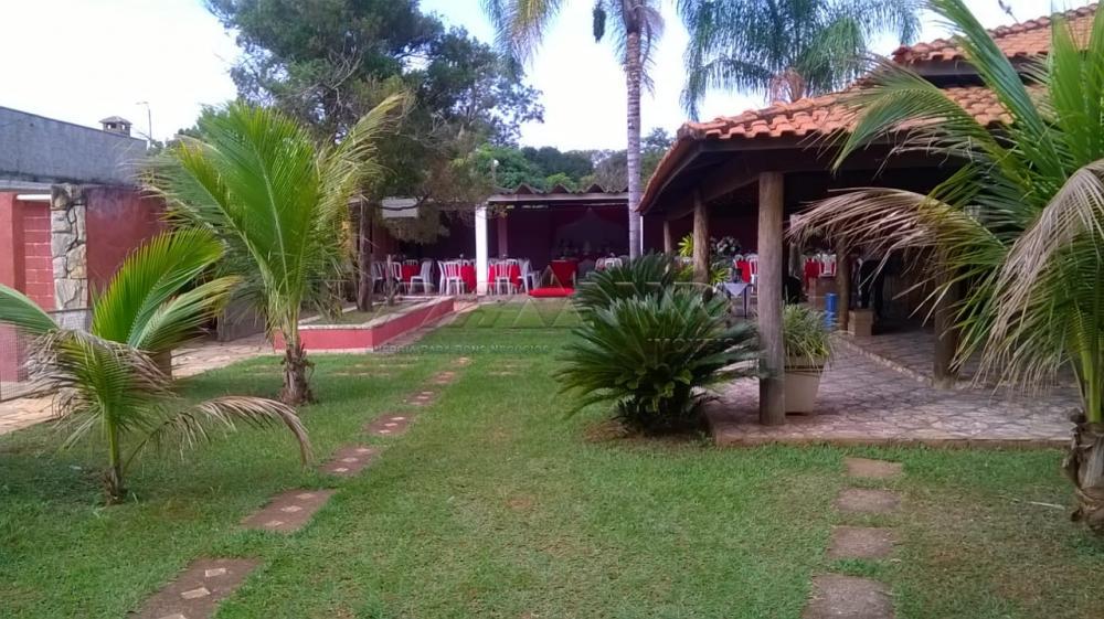 Comprar Rural / Chácara em Ribeirão Preto apenas R$ 450.000,00 - Foto 6