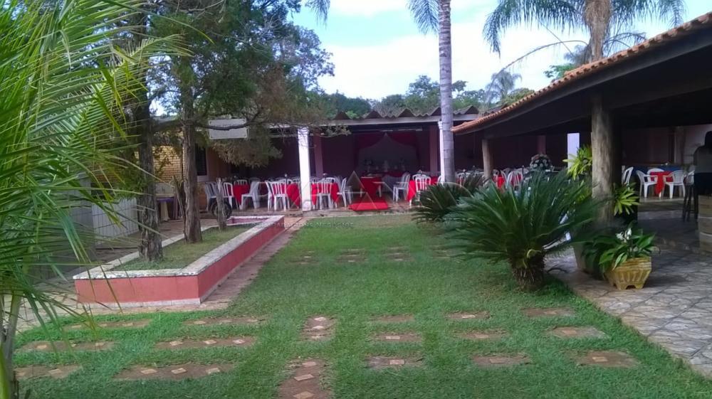 Comprar Rural / Chácara em Ribeirão Preto apenas R$ 450.000,00 - Foto 9