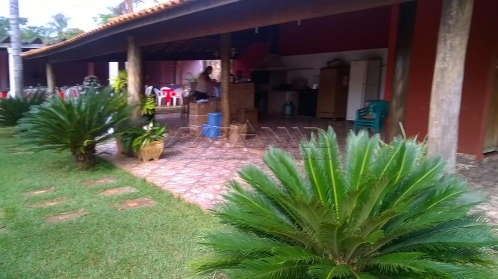Comprar Rural / Chácara em Ribeirão Preto apenas R$ 450.000,00 - Foto 13