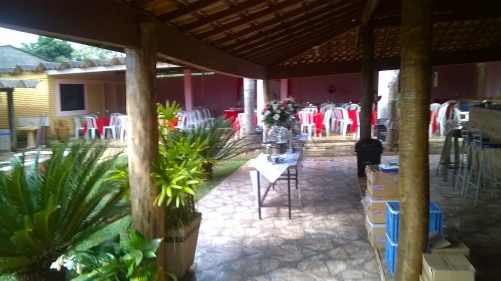 Comprar Rural / Chácara em Ribeirão Preto apenas R$ 450.000,00 - Foto 12