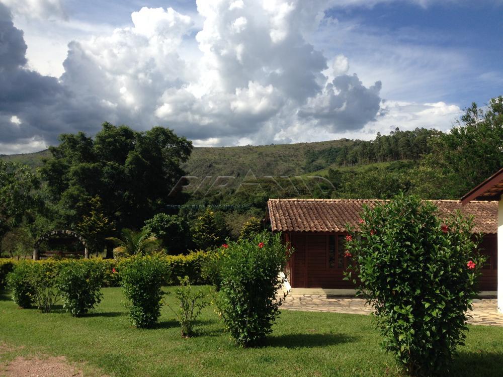 Comprar Rural / Fazenda em São João Batista do Glória apenas R$ 3.500.000,00 - Foto 3