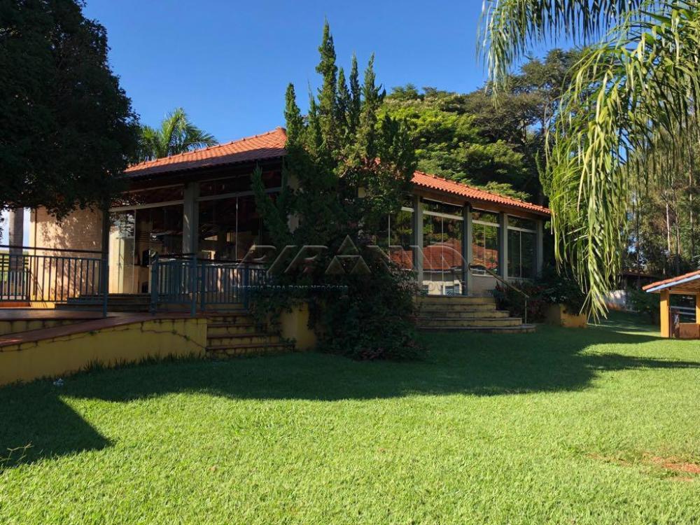 Cajuru Rural Venda R$2.399.000,00 5 Dormitorios 5 Suites Area do terreno 2662.00m2 Area construida 400.00m2