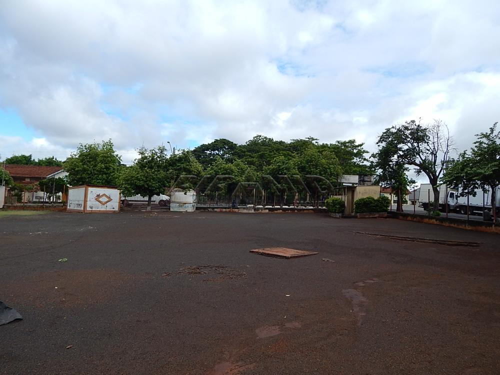 Alugar Terreno / Terreno em Ribeirão Preto apenas R$ 6.000,00 - Foto 3