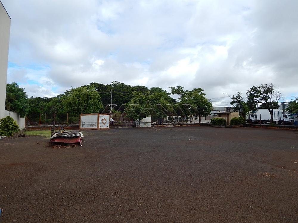 Alugar Terreno / Terreno em Ribeirão Preto apenas R$ 6.000,00 - Foto 4