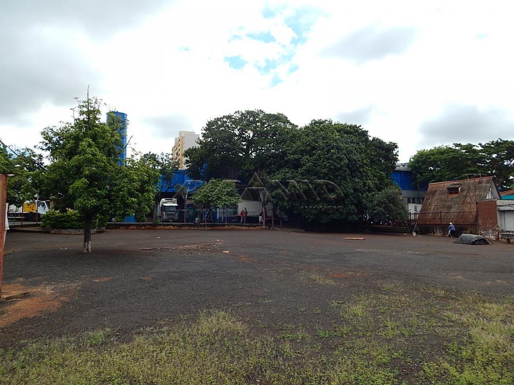 Alugar Terreno / Terreno em Ribeirão Preto apenas R$ 6.000,00 - Foto 6