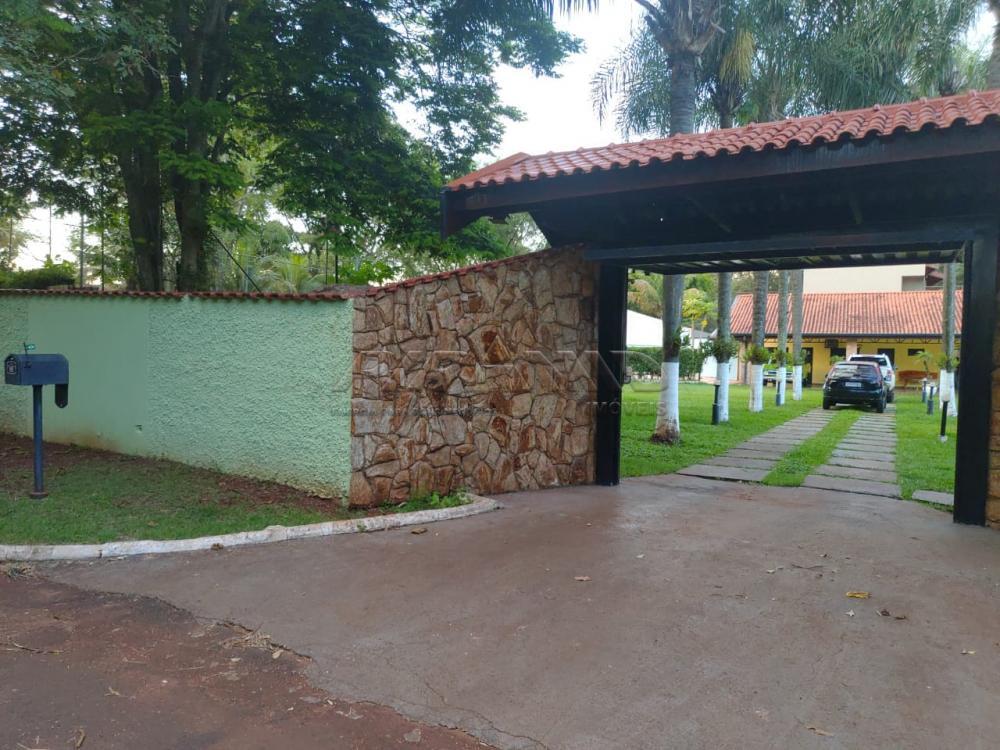 Comprar Rural / Chácara em Ribeirão Preto apenas R$ 1.590.000,00 - Foto 2