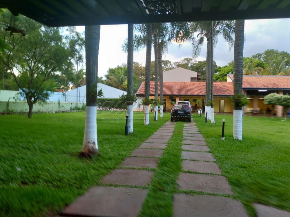 Comprar Rural / Chácara em Ribeirão Preto apenas R$ 1.590.000,00 - Foto 3