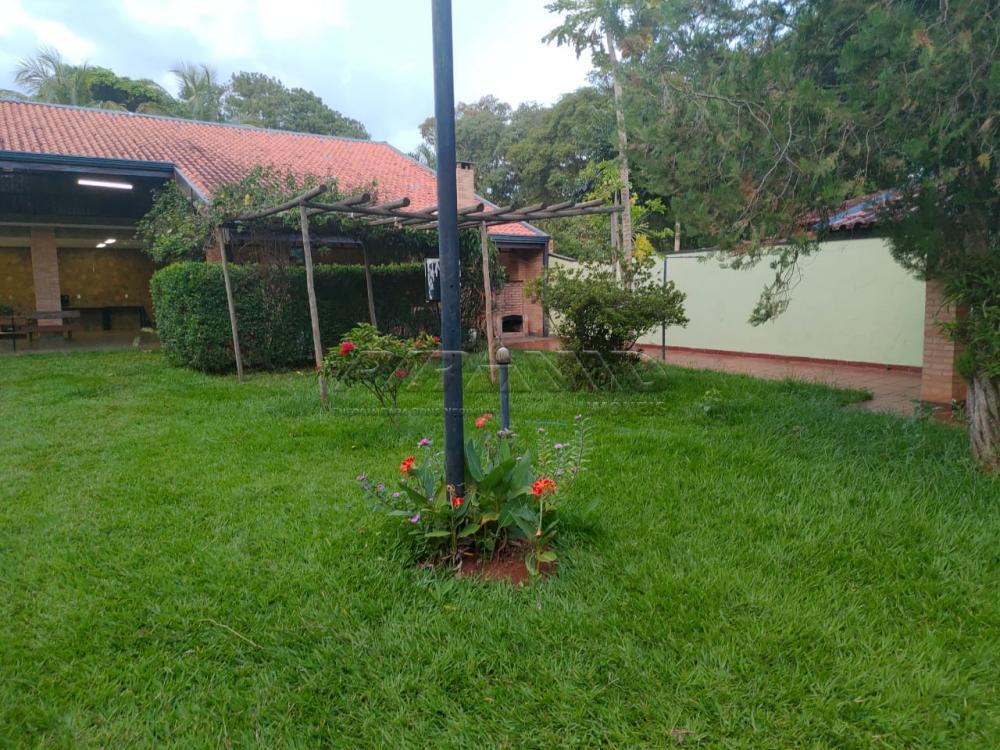 Comprar Rural / Chácara em Ribeirão Preto apenas R$ 1.590.000,00 - Foto 10