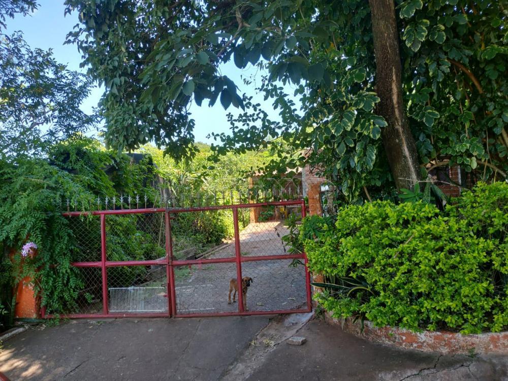Comprar Rural / Chácara em Jardinópolis R$ 2.700.000,00 - Foto 1