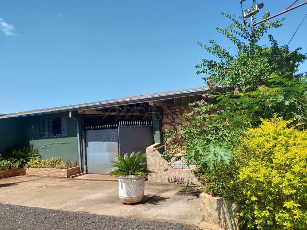 Comprar Rural / Chácara em Jardinópolis R$ 2.700.000,00 - Foto 3